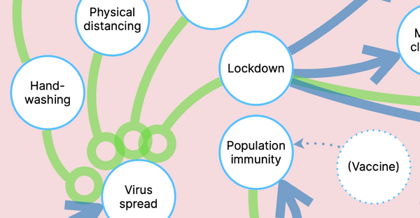 The systemic complexity of managing a pandemic